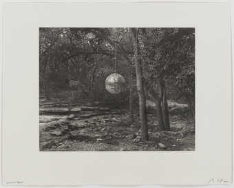 An image of mirrored discoball hanging in a forest.