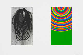 A series of prints each containing a photogravure image and an a linocut abstraction of the image.